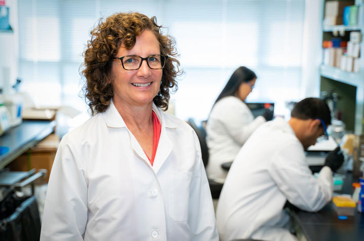 """Research led by Barbara Nikolajczyk, Ph.D., was selected as """"Best of Cell Metabolism 2020"""" Photo 