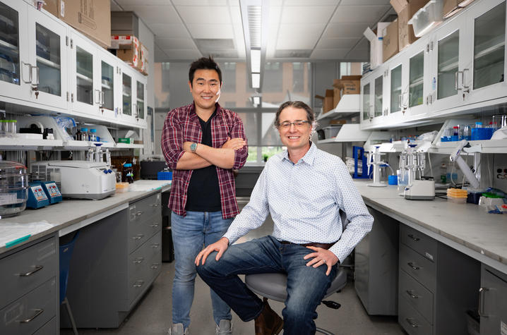 Ramon Sun and Matt Gentry collaborated with other researchers to discover an additional type of sugar in the brain. Photo by Pete Comparoni   UKphoto
