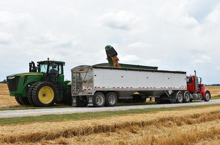 Cyrus Bivens unloads wheat into a semi. Photo by Katie Pratt, UK agricultural communications.
