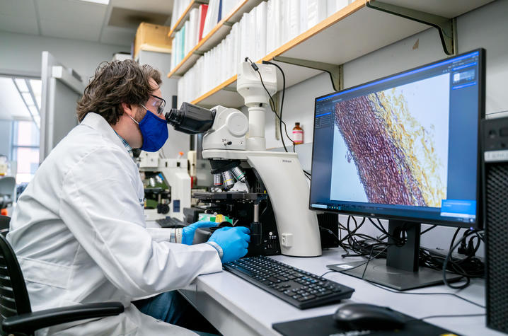 Saha Cardiovascular Research Center Senior Research Associate Michael Franklin examines fibers in aortic tissue that are important to maintain the aorta's function. Ben Corwin | UK Research Communications