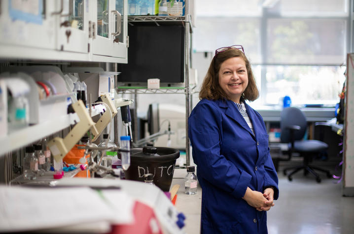 A new study led by UK virologist Becky Dutch reveals foundational characteristics of SARS-CoV-2's spike protein. Pete Comparoni | UK Photo