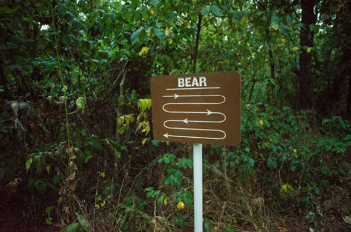 "photo of ""Bear"" sign from ""Unreliable Bestiary"" series by Deke Weaver"