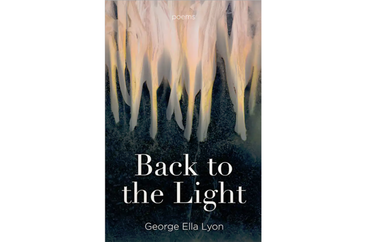 """""""Back to the Light"""" cover artwork"""