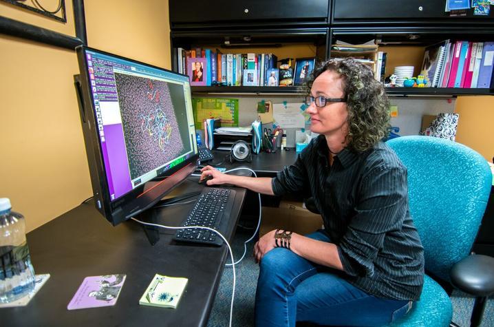 Sally Ellingson, PhD
