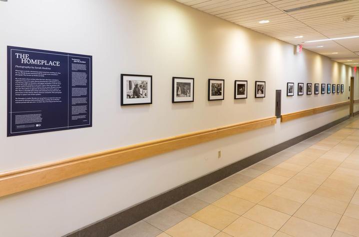 Photo of exhibit in hospital hallway