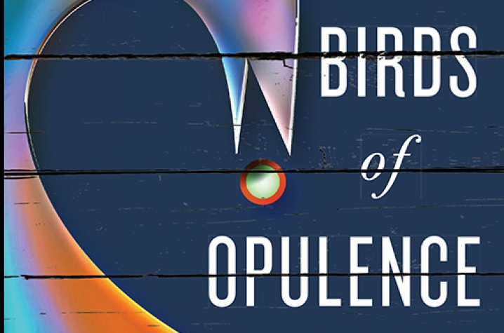 "photo of cover of ""The Birds of Opulence"" by Crystal Wilkinson"