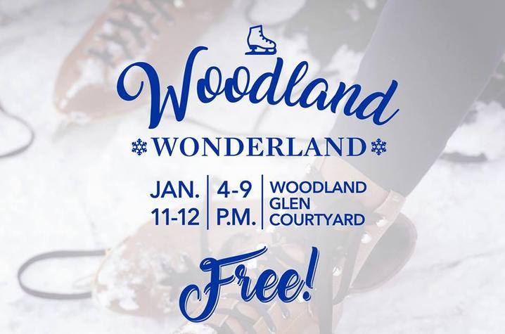 photo of Woodland Wonderland artwork