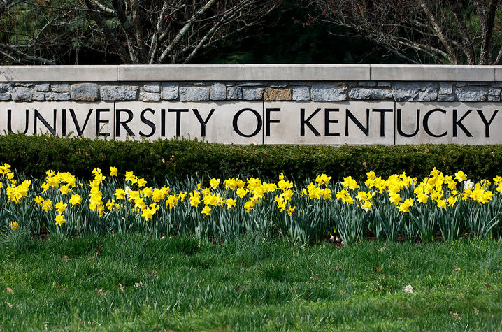 photo of front gate University of Kentucky sign with yellow daffodils in front of it