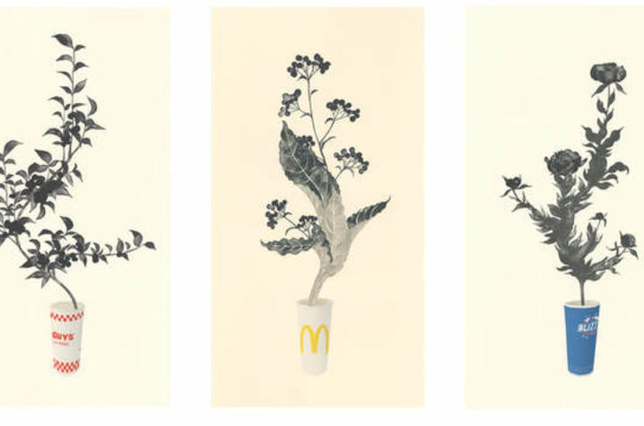 photo for works featuring stems of plants in popular business cups by Yoonmi Nam