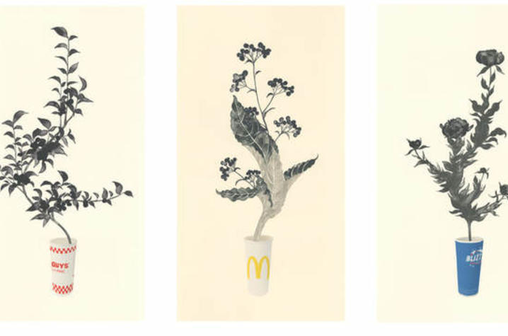 photo of 4 prints of plant stems coming out of fast food cups by Yoonmi Nam