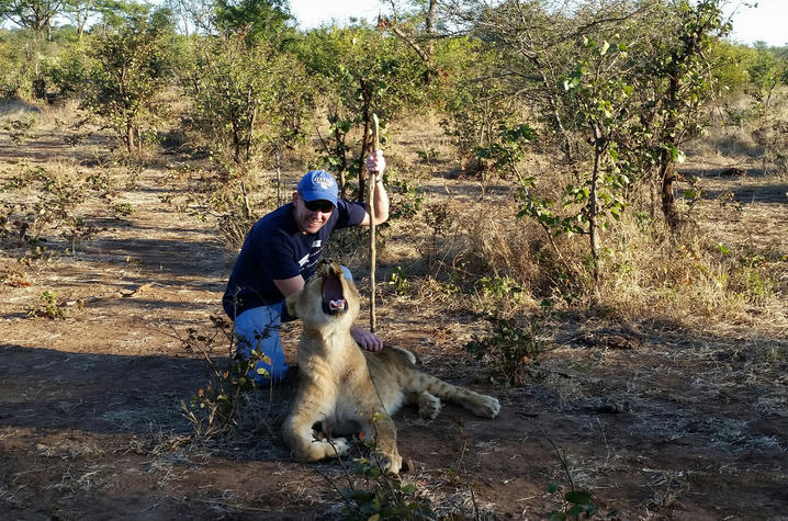This is a photo of UK Alumnus Jason Darnall next to a lion in Africa.