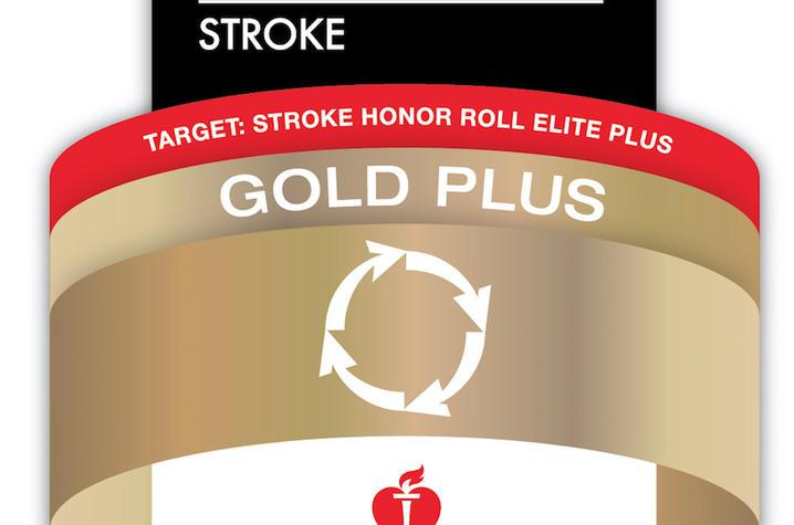The AHA Stroke Gold Plus logo