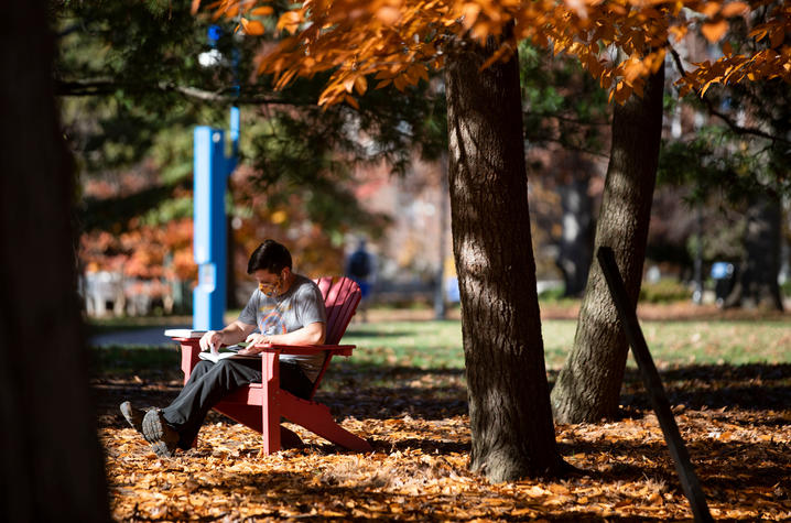 student with mask sitting in chair under tree with fall leaf color on campus