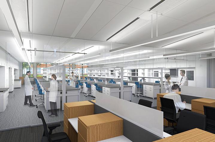 RB2 lab rendering