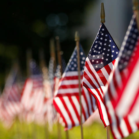 Photo of American flags on University lawn