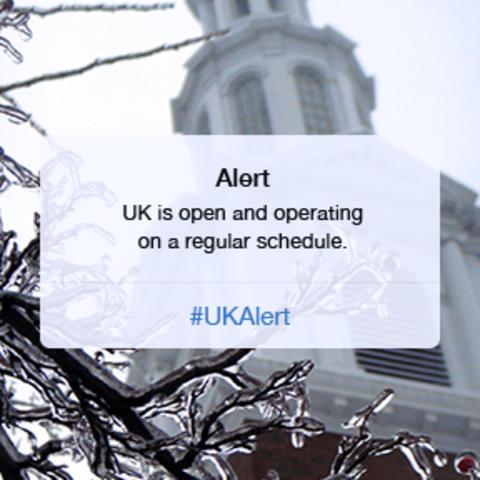 UK Open image