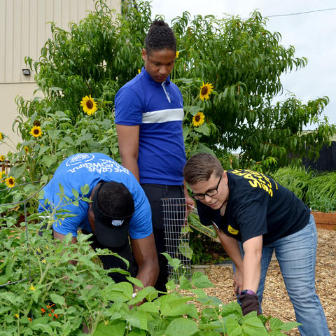 Youth in Garden at UK Cooperative Extension Office in Jefferson County