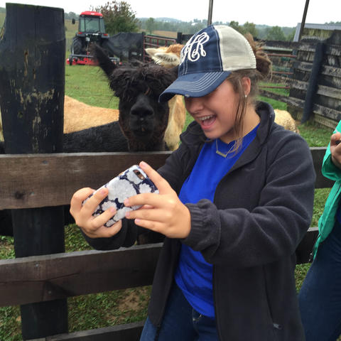 A selfie with an alpaca
