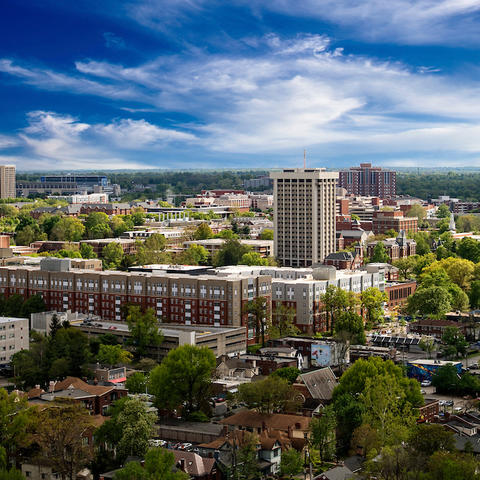 Photo of UK's campus