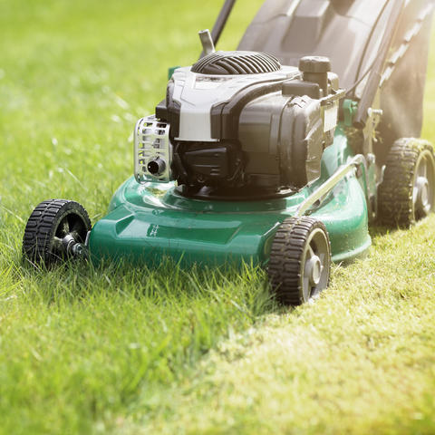 lawn mower clinic