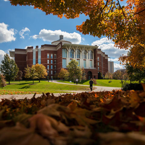 photo of William T. Young library in the fall