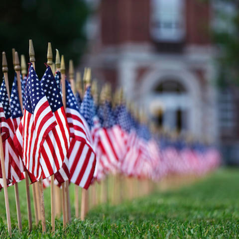 Photo of flags on campus