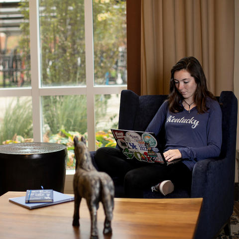 photo of student seated in comfy chair working on laptop near window of a den setting