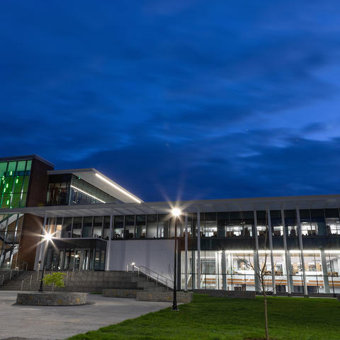 photo of law building lit green