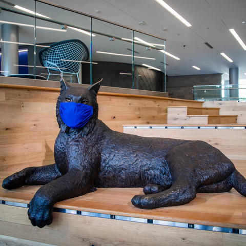 photo of Bowman Wildcat statue in Gatton Student Center wearing a mask