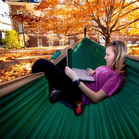 photo of a student looking at laptop while in a hammock on campus