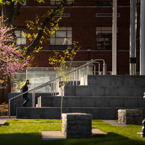 student walking up steps to enter law building with beautiful pink blooming tree behind her