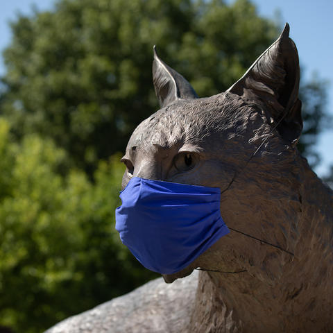 photo of Bowman in Wildcat Alumni Plaza wearing a UK blue mask