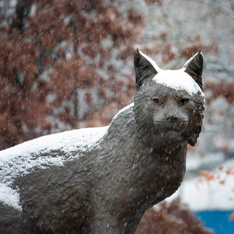 statue of Bowman at Wildcat Alumni Plaza in the snow
