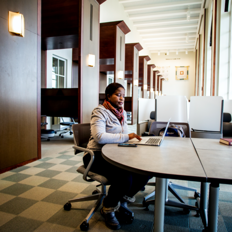 photo of graduate student working on laptop in William T. Young Library