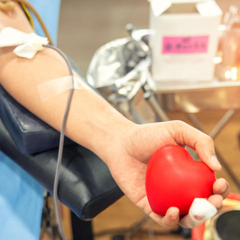 picture of the arm of someone giving blood