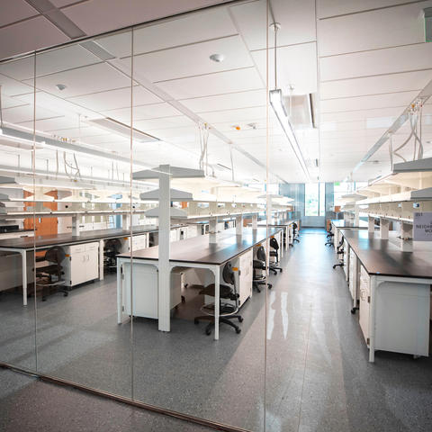 photo of lab in Research Building 2