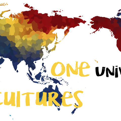 One University, Many Cultures