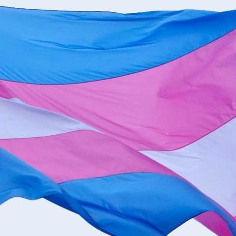 Photo of transgender flag