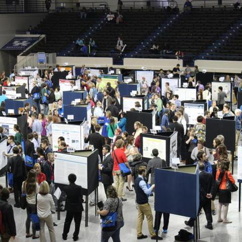 UK Showcase of Undergraduate Research