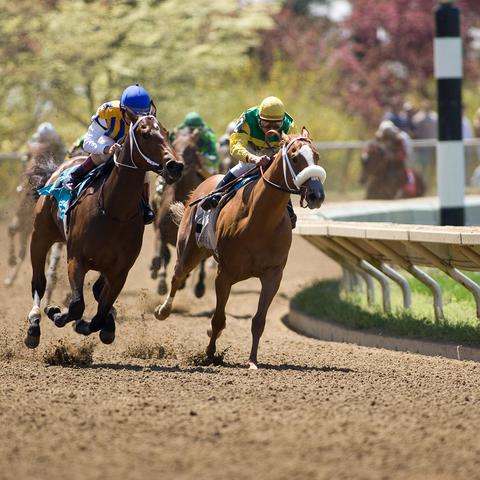Horses racing at Keeneland
