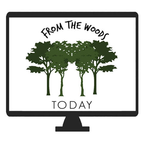 """""""From The Woods Today"""" logo featuring green trees on white background"""