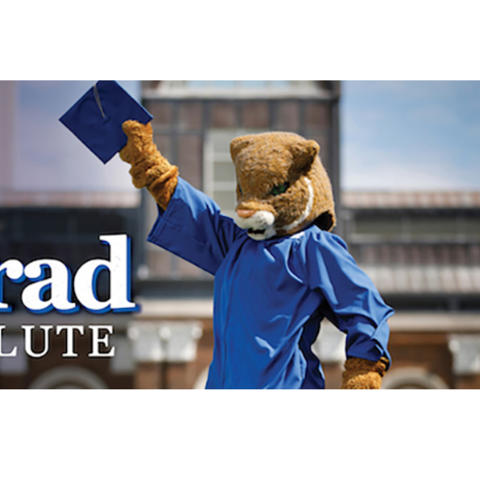 """photo of the UK Wildcat mascot with a graduation gown on and holding a mortarboard, with the words """"Grad Salute"""""""
