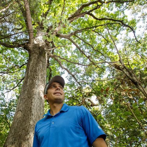 Seth DeBolt poses in blue shirt against Maker's Mark White Oak tree