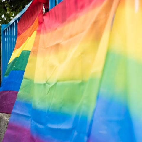 Rainbow flags.