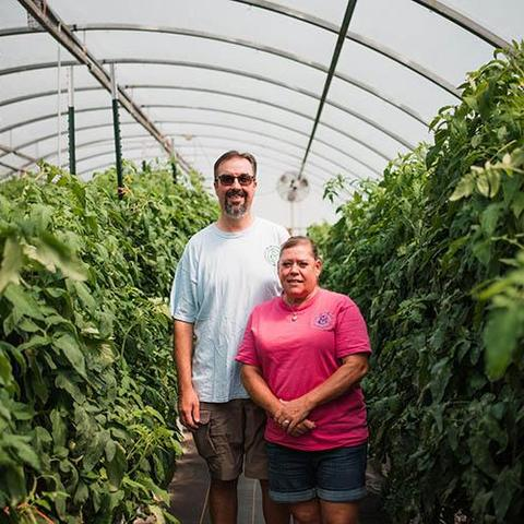 photo of Velvet and Mark Henkle in their high tunnels of tomato plants.