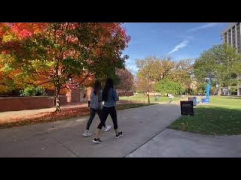Thumbnail of video for UK Grounds Team Makes Campus Beautiful in All Seasons